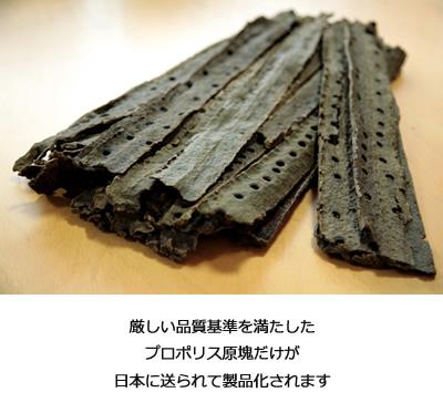 厳しい品質基準を満たしたプロポリス原塊だけが日本に送られて製品化されます